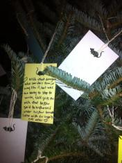Fir Limb Hopes, Dreams and Wishes